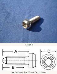 M7x24,5