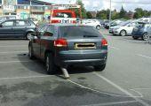Ezért se emberkedj a TESCO parkolóban.