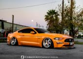 Muscle stance - Ford Mustang 5.0