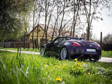 Spring Shoot @ Szeged