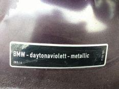 Daytona Violet